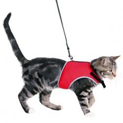 Postroj vesta pro kočku