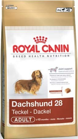 Royal Canin JEZEVČÍK