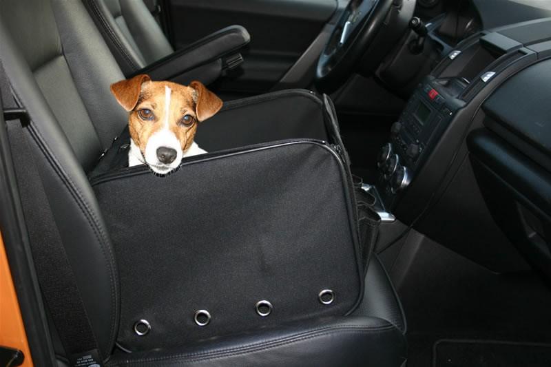 Box do auta GreenDog pro psa skládací