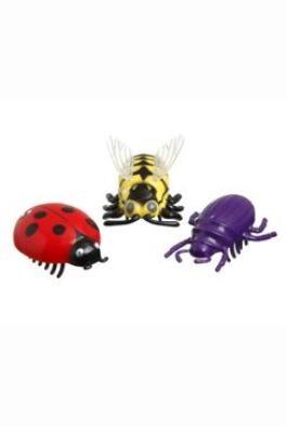 Hmyz interaktivní hračka pro kočku